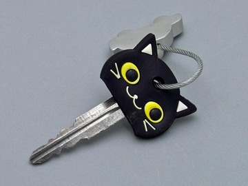 Blackcat_key2