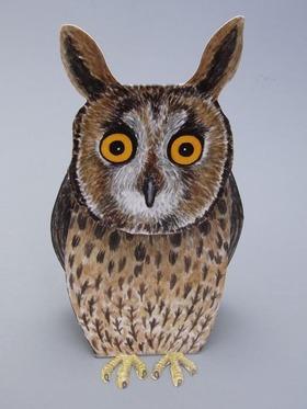 Scos_eagle_owl_2