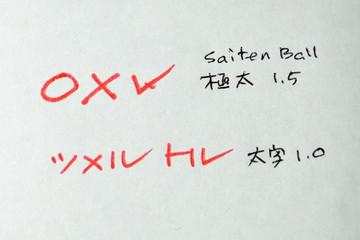 Ohto_saitenbp_3