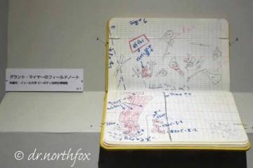 Fieldnote_1964_dino