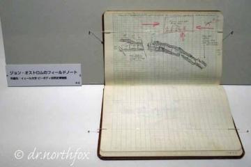 Fieldnote_1965_dino