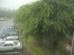 rainth.jpg