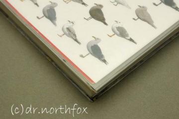 Daiso_book_cover_5