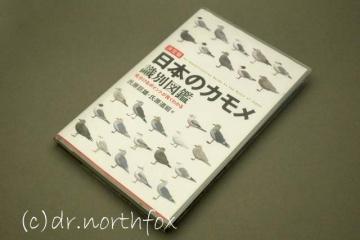 Daiso_book_cover_6